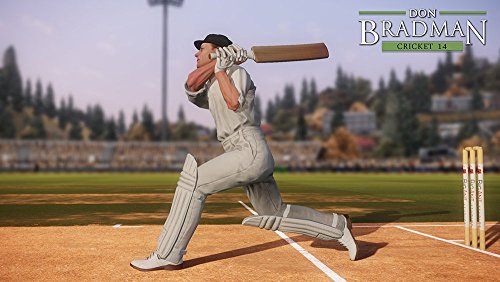 DON BRADMAN CRICKET 14 (PS4) by Tru Blu Entertainment (Image #2)