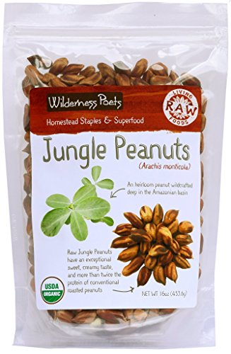 Wilderness Poets Jungle Peanuts - Organic & Raw - Amazon Jungle Peanuts, 1 Pound (16 Ounce)