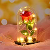 Beauty and The Beast Rose DIY Kit, Micro Landscape Red Rose with Fallen Petals and RGB+White Led Light in a Glass Dome on Wooden Base for Home Crafts Decor by USA (Red A)