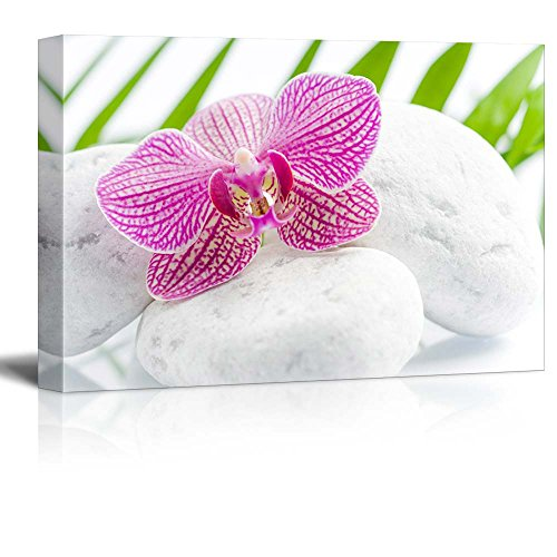 Pink Orchid Over Rocks with Palm Leaves on the Background