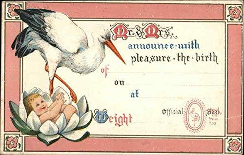 Birth Announcement Storks Original Vintage Postcard
