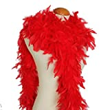 Cynthia's Feathers 65g Chandelle Feather Boas Over 80 Colors & Patterns to Pick Up (Red)
