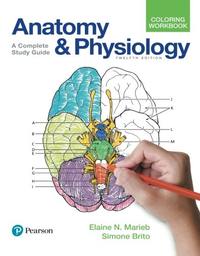 anatomy coloring book 6th edition elaine n marieb author profile news books and speaking