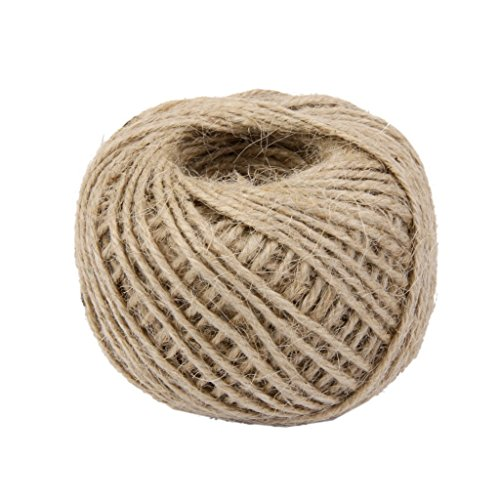 Ply Hemp 3 (RayLineDo 2mm Jute Twine String 3-Ply 100 Meter Hemp Rope Cord for Tag, Gifts Wrapping, Wedding Decoration, Office, Gardening Projects in Natural)