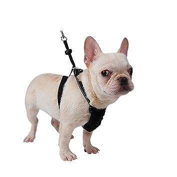 XDYFF Animal Doméstico Pet Harness Arnés para Perros Que No Tira ...