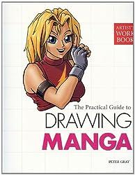 Drawing Manga (Artist's Workbook)