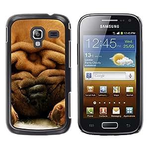 Be Good Phone Accessory // Dura Cáscara cubierta Protectora Caso Carcasa Funda de Protección para Samsung Galaxy Ace 2 I8160 Ace II X S7560M // Chinese Shar-Pei Dog Fur Brown