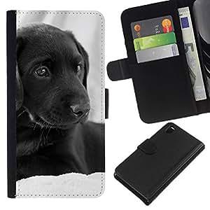 All Phone Most Case / Oferta Especial Cáscara Funda de cuero Monedero Cubierta de proteccion Caso / Wallet Case for Sony Xperia Z3 D6603 // Curly Coated Black Short Hair Retriever Dog