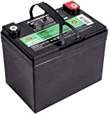 Interstate Sealed Lead Acid (AGM) Deep Cycle Battery