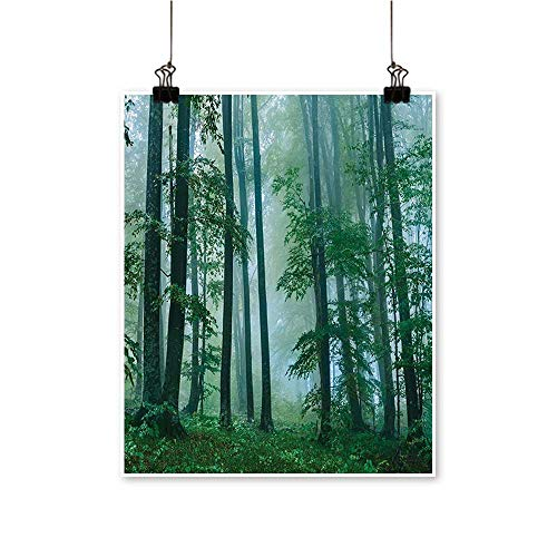 (Hanging Painting Foggy Forest Magical Hazy Habitat Woodland Mist Serene Jungle Photo Green Rich in Color,32