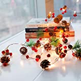 EFlash Christmas LED Lights Xmas
