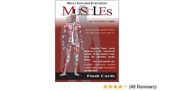 The Muscles Flash Cards Anatomy Amazon Books