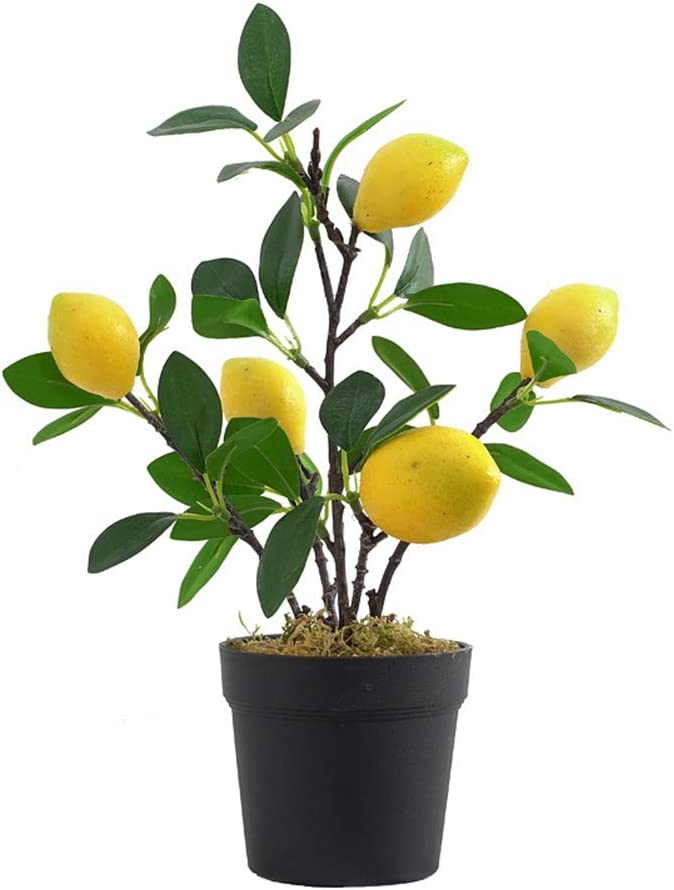 UNIE Artificial Lemon Topiary Mini Tree Potted Fake Plants in Pot for Home Office Decorations
