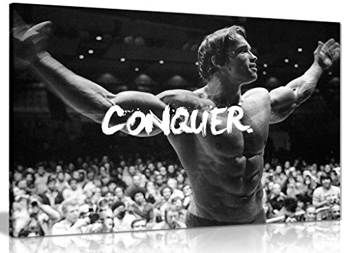 Motivational Inspiritional Arnold Schwarzenegger Conquer Canvas Picture Print (30x20in)