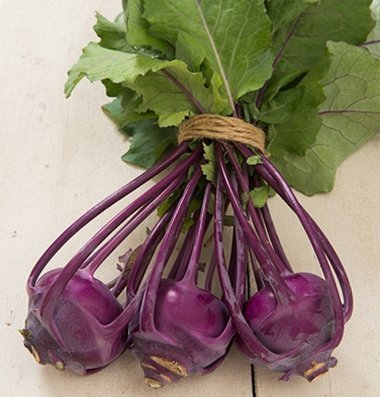 David's Garden Seeds Kohlrabi Azur Star D3642GF (Purple) 25 Organic Seeds