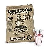 Great Northern Premium Gourmet Mushroom Popcorn Bulk Bag
