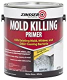 Mold Killing Primer 1gl