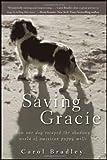 Saving Gracie, Carol Bradley, 1118012275