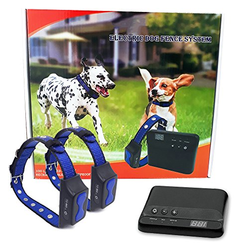 Floyd Invisible Electric Fence for Dogs Perimeter Fence Prevents Pets Escaping - Easy-to-Use, Maintenance-Free Underground System - All-Inclusive for Quick Installation - Superb Follow-Up Support