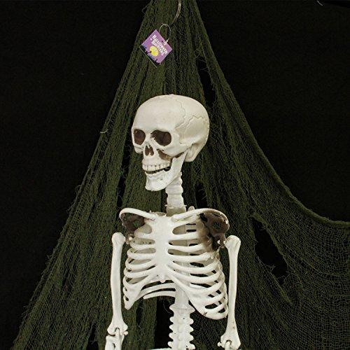 Halloween Haunters 3 Foot Hanging Full Body Skeleton Plastic Prop Decoration - Posable Joints, Scary Human Skull & Bones by Halloween Haunters (Image #3)