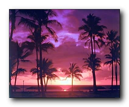 amazon com impact posters gallery wall decor tropical palm trees