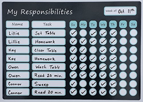 Magnetic Responsibility Chart Dry Erase Board 9.75