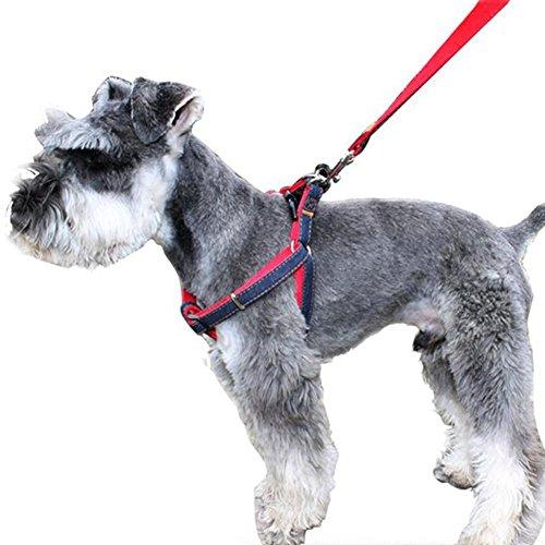 - CUGLB No-Pull Dog Leash Harness Adjustable and Heavy Duty Denim Dog Training Walking Leash Collar for Large/Medium/Small Dog Cat (Red, XL)