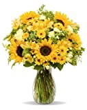 Rays of Sunshine is a cheerful choice to send warm wishes and joyful sentiments.  With its bold blooms resembling the rays of the sun, this fun-loving bouquet will brighten up any room.  Featuring sunflowers, snapdragons, solidago, peruvian l...