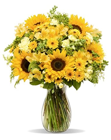 Benchmark Bouquets Rays of Sunshine, With Vase - Flowers And Gifts