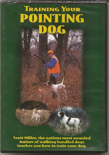 TRAINING YOUR POINTING DOG DVD (Pointing Dog Training Dvd)