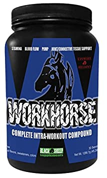 Workhorse Intra-workout Compound, Raspberry Beetdown Flavor, 30 Servings, NOT YOUR AVERAGE PRE-WORKOUT