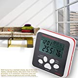 Thermometer, CN2001A LCD Display Digital