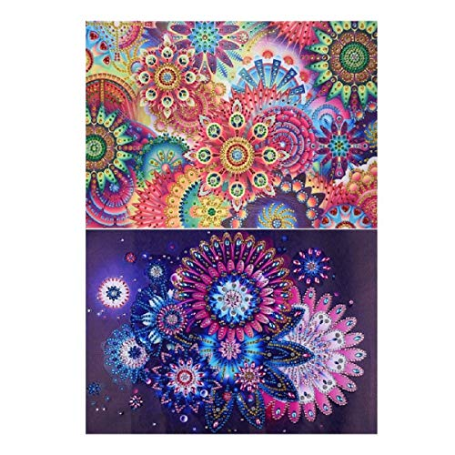 Putars 2Pcs/Set DIY 5D Diamond Painting by Number Kits, Crystal Rhinestone Diamond Embroidery Paintings Pictures Arts Craft for Home Wall Decor, Colorful Flower, ()