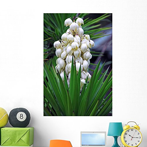 Wallmonkeys WM188231 Yucca Baccata Flower Peel and Stick Wall Decals (48 in H x 32 in W), Extra Large ()