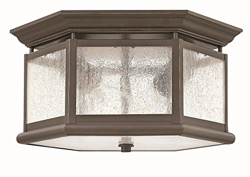 Hinkley Lighting Edgewater Outdoor Light - Hinkley 1683OZ Edgewater - Two Light Outdoor Flush Mount, Oil Rubbed Bronze Finish with Clear Seedy Glass