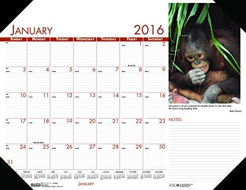 Wildlife Desk Pad Calendar - House of Doolittle 2016 Monthly Desk Pad Calendar, Earthscapes Wildlife, 22 x 17