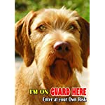 Attention - Beware / Fun Sign Dog Wirehaired Vizsla Dog for your home or house SF2314 5