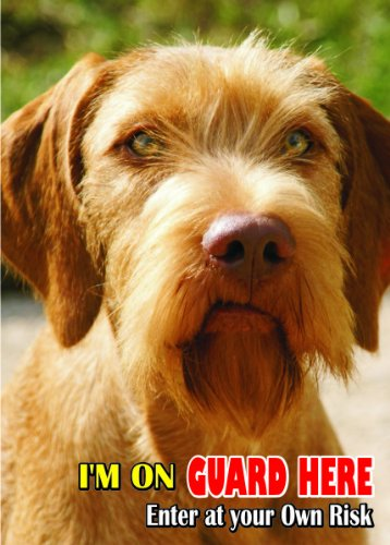 Attention - Beware / Fun Sign Dog Wirehaired Vizsla Dog for your home or house SF2314 1