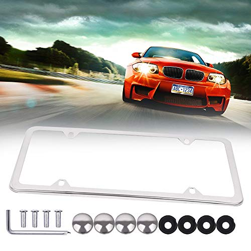 ECCPP License Plate Frame Protect Plates Universal License Plate Covers with Screws for US Vehicles (1Pcs 4 Holes Silver) ()