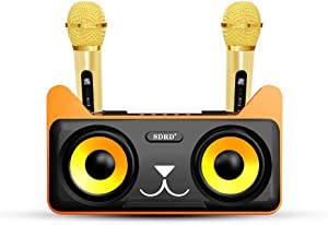 Karaoke Machine, Portable PA Speaker System With 2 Wireless Microphone LED Lights, Tablet Holder, PA System & Karaoke Song Mode for Home Party, Meeting, Wedding, Church, Picnic, Outdoor/Indoor (Black)