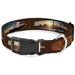 Vibrant and bold, this beautiful, polyester dog collar is made to show off your dog's unique style through all the seasons. With an over engineered plastic buckle and strong D-ring, this durable collar can hold up to whatever your dog can dis...