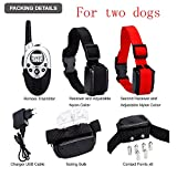 800-1000-Yards-Ultra-Dual-Rechargeable-Rainwaterproof-Dog-Training-Collar-with-LCD-Remote-Adjustable-Shock-Vibration-Sound-Stimulations-for-2-Dogs
