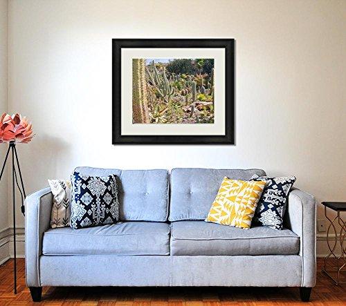 Ashley Framed Prints Cactus Garden At La Palma Spain, Wall Art Home Decoration, Color, 34x40 (frame size), AG6391933 by Ashley Framed Prints (Image #1)