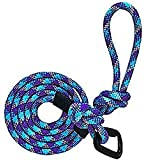 Kula Co. 6 ft Heavy Duty Mountain Climbing Rope Dog Leash with Carabiner