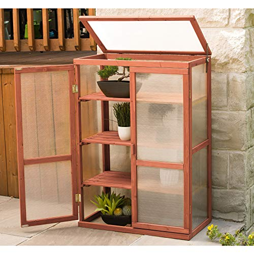All Season Greenhouse - Leisure Season Mini Greenhouse, Protect Starter Plants Flowers Solid Wood, Decay Resistant