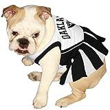 NFL Oakland Raiders Black-White Pet Cheerleader Dress