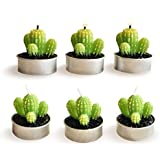 Cactus Candles, Mini Cute Succulent Tealight Candles for Home Decor Gift Birthday Party, 6 Pcs (H01)