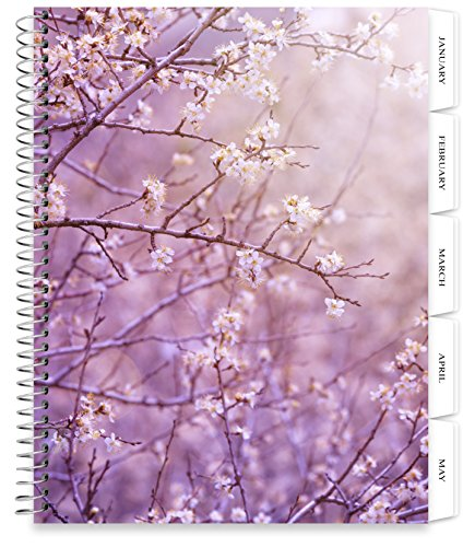 Blooms Dated Weekly (Tools4Wisdom Planners 2018 Planner - 8.5 x 11 Softcover - Dated 2018 Calendar Year - Daily Weekly Monthly Yearly Day Planner (Spiral Bound with Tabs - Spring in Bloom Cover))