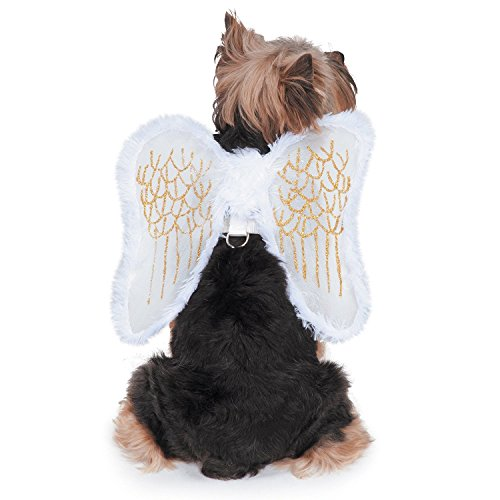 Zack & Zoey Fur-Trimmed Angel Wings Harness for Dogs, Small (Dress Up Dogs)