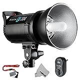 Fomito Godox DE300 300W Compact Studio Flash Light Strobe Lighting Lamp Head 110V